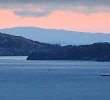 Dusk Cruise on the San Francisco Bay by David Denny