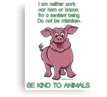 Be kind to pigs Canvas Print