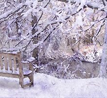 Winter On The River by perkinsdesigns