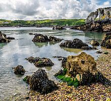 Pebble Bay by Adrian Evans