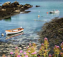 Bull Bay Boats by Adrian Evans