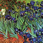 'Blue Irises' by Vincent Van Gogh (Reproduction) by Roz Abellera Art Gallery