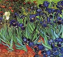 'Blue Irises' by Vincent Van Gogh (Reproduction) by Roz Barron Abellera