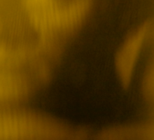 Alejandro Jodorowsky Awake  Sticker