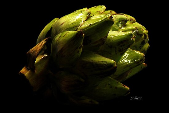 Artichoke Shadows by Rosemary Sobiera