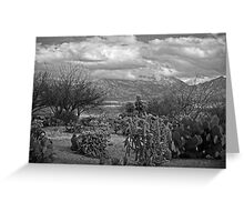 The Desert Floor ~ Snow Covered Mountains ~ Just Another Winter Day in the Desert Southwest Greeting Card