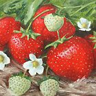 Strawberries by Lynne  Kirby