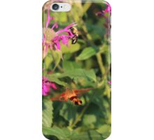 Sunrise on the Assiniboine iPhone Case/Skin