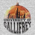 University of Gallifrey by Redsdesign
