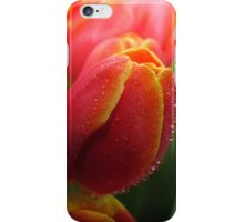 Tutti Frutti Tulips! iPhone Case/Skin