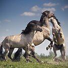 Dancing Horses by Henri Ton
