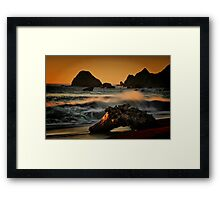 Driftwood on the Sand Framed Print