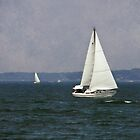 Lake Erie Sailing by SRowe Art