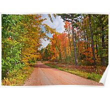 Fall in Wisconsin Poster
