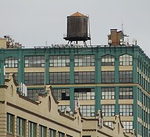 A Water Tower Grows in Brooklyn by Gilda Axelrod