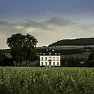 Chateau in Puligny-Montrachet, Burgundy, France. by Neville Jones