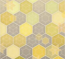 Lemon & Grey Honeycomb by micklyn