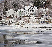 Icy Snowy Winter Wonderland by Gilda Axelrod