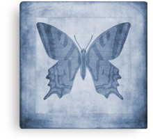 Butterfly Textures Cyanotype Canvas Print