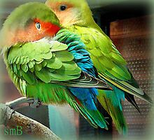 Love Birds In My Garden by Susan Bergstrom