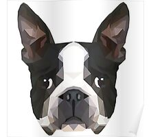 Crystalline Boston Terrier Poster