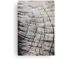 Leadwood - Textured Hardwood - Unique African Patterns Canvas Print