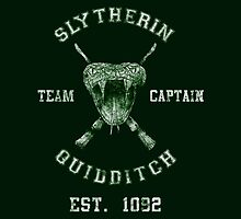 Slytherin Quidditch - HP by Mellark90