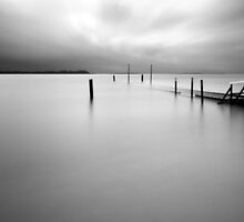 Rising Above Water by lawsphotography