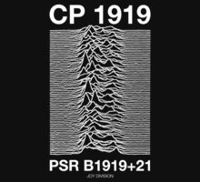 Joy Division- Pulse by MetroKab