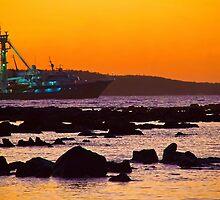 Ecuador. Galapagos Islands. Puerto Ayora. Sunrise. by vadim19