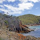 Freycinet Coastline by Harry Oldmeadow