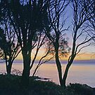 Freycinet Sunset by Harry Oldmeadow