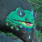 Frog Rock by Penny Smith