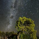 Southern Milky Way and Bent Tree by Alex Cherney