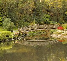 Edward's Gardens bridge by John Velocci