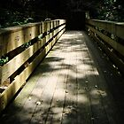 Woodland Bridge by debidabble