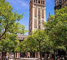 Patio de los Naranjos - Catedral de Sevilla, Andalucia, Spain by TonyCrehan