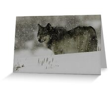 Winter Wolf #1 Greeting Card