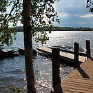 Summer Afternoon, Eagle Lake by John Carpenter