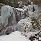 Chameleon Falls February Freeze by Tim Holmes