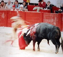 BULLFIGHT  4 by danielgomez
