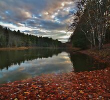 Pickerel Pond Autumn Sunset by Tim Holmes
