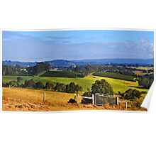 View To Byron Bay Poster