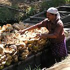 Loading coconut husks by indiafrank