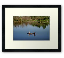 The Ducks Framed Print