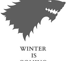 House Stark by richarddd169