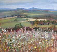 'Meadow Grasses, Anzac Hill' (Seymour) by Lynda Robinson