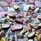Stones of Lake Macdonald - Glacier National Park by Lexi