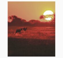 Springbok - African Wildlife Background - Magnificent Sun Kids Clothes