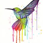 Hummingbird of Watercolor Rainbow Bird Painting by OlechkaDesign